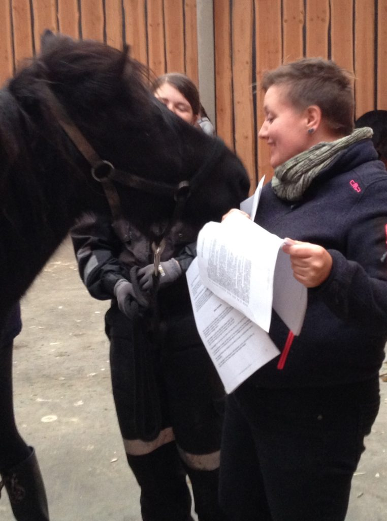 teori sarahs hestemassage kursus