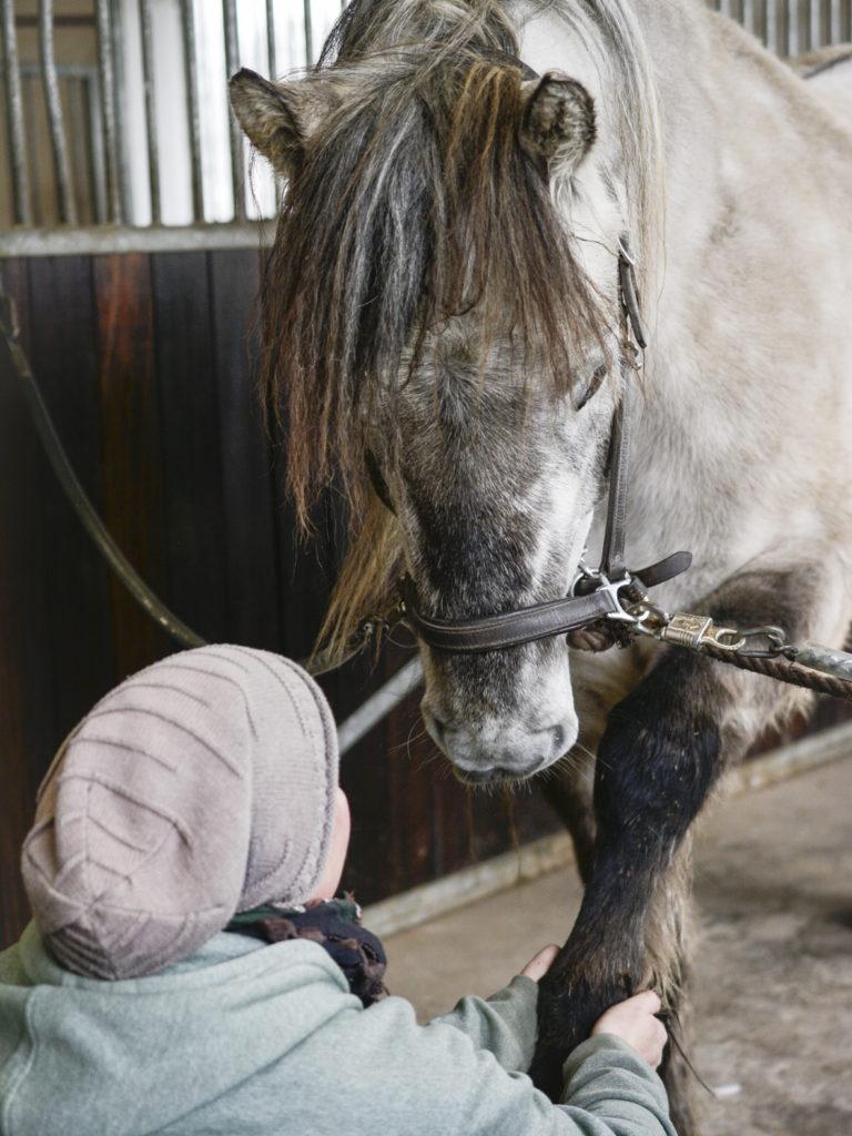 stretching hestemassage sarah hestemassør