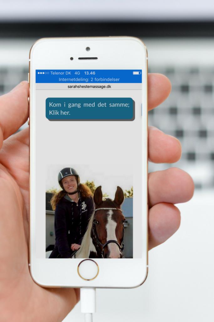 online kursus hestemassage tilmeld