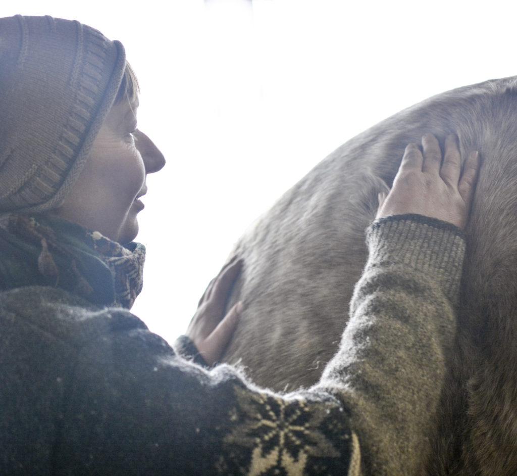sarahs hestemassage kontakt