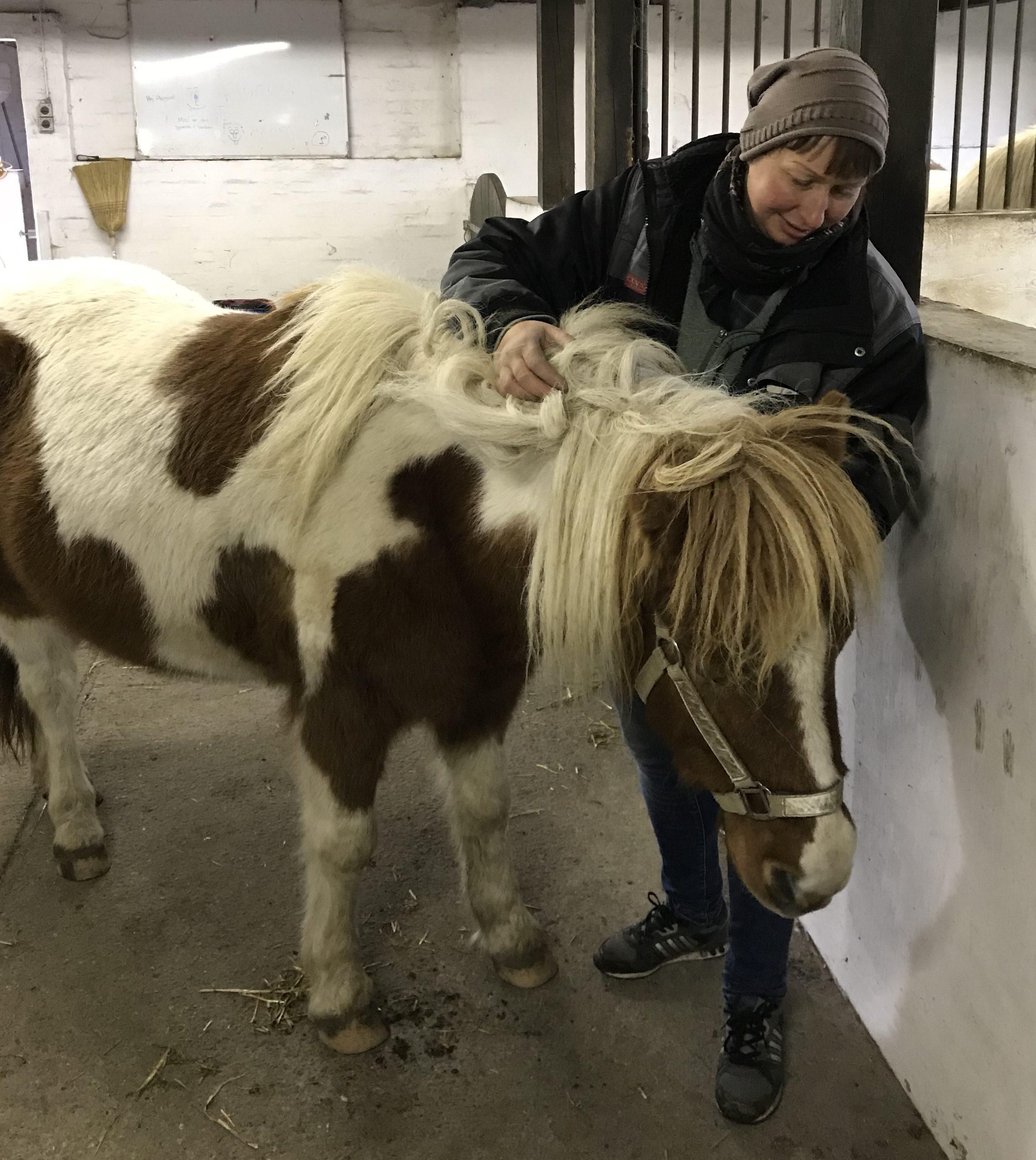 hestemassage broget pony sarah