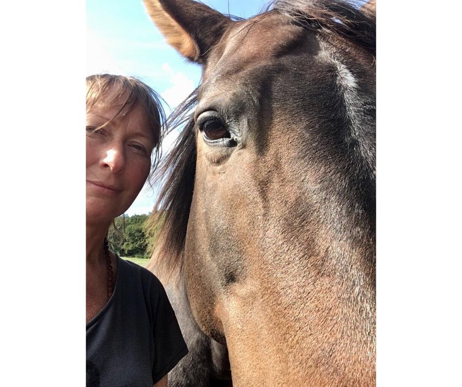 sarahs hestemassage uddannelse hest